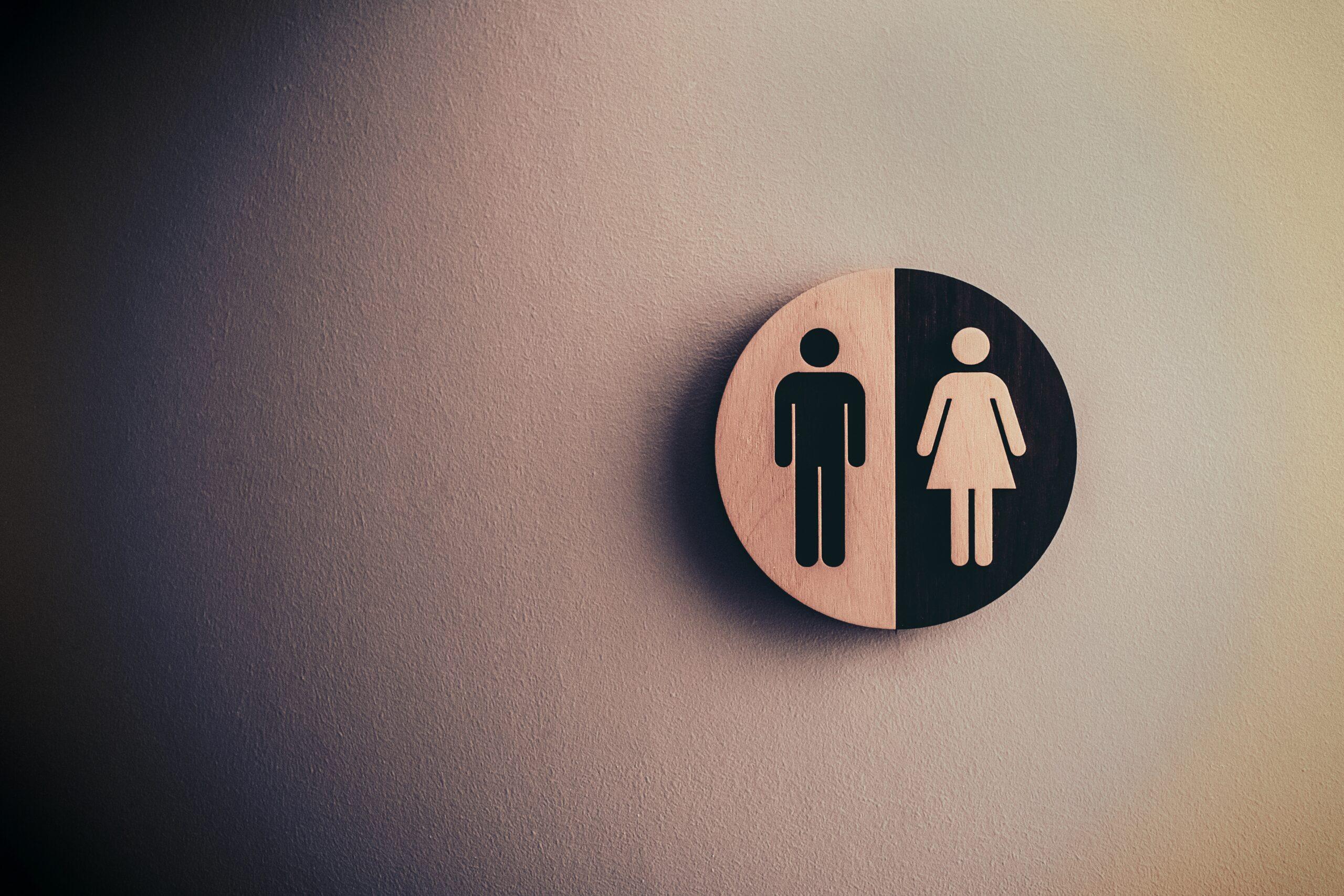 Çalışma Ortamında Toplumsal Cinsiyet Eşitliği
