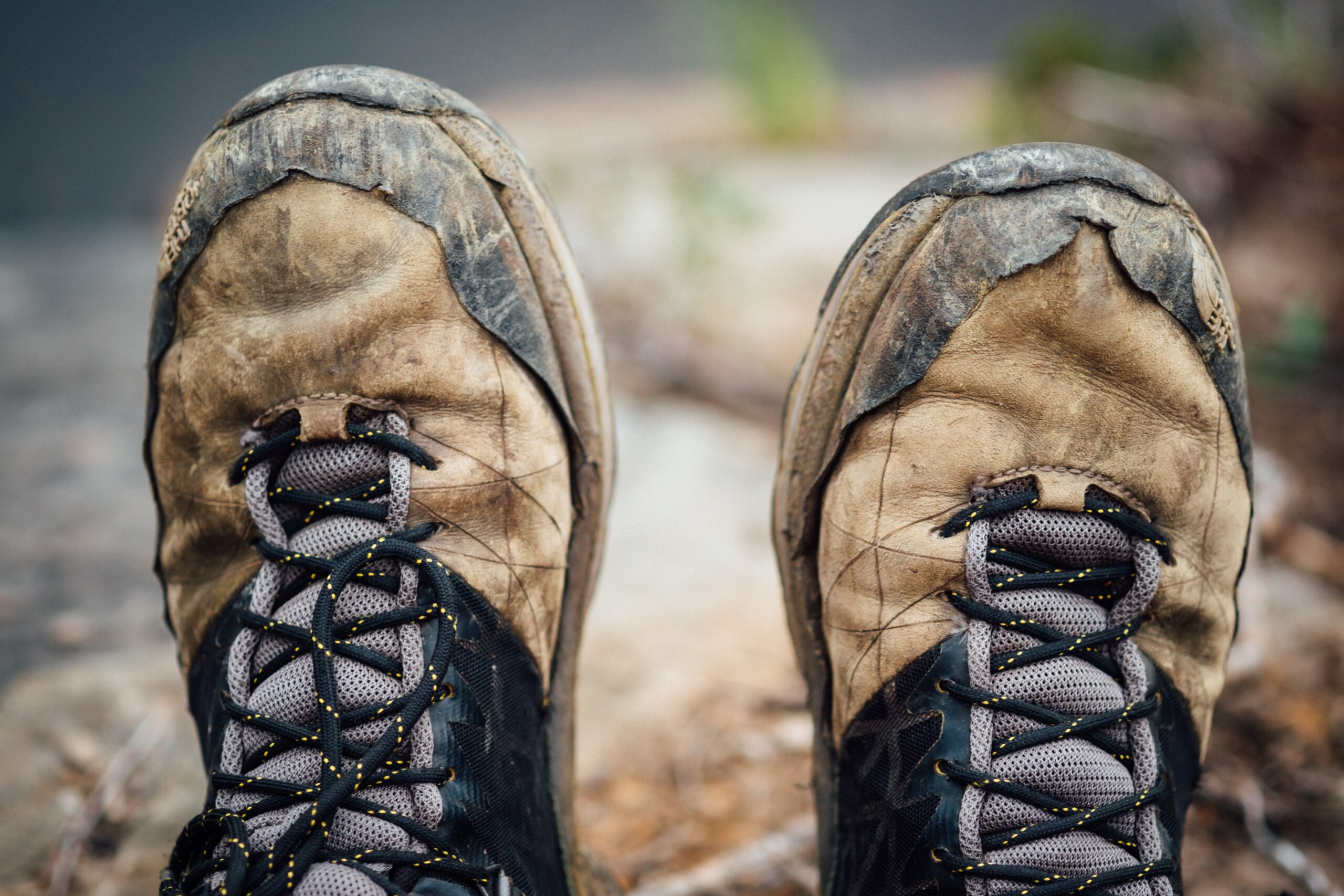 iş ayakkabısı